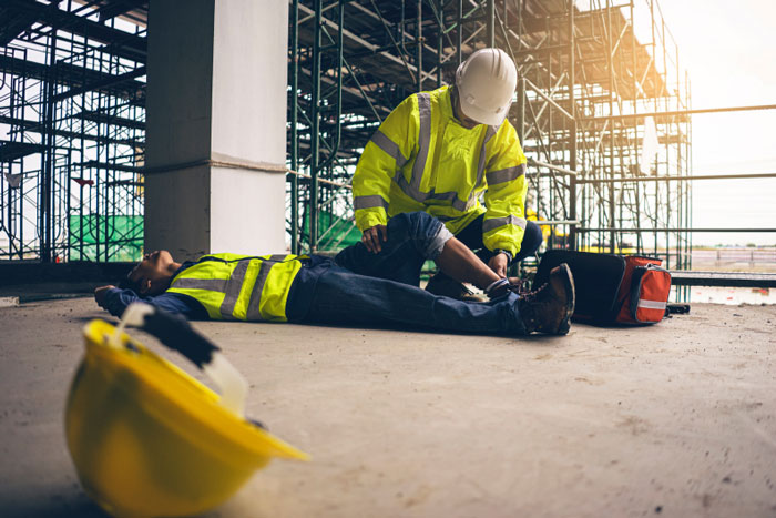 The value of OSH —estimating the costs of occupational injuries and diseases